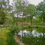 Dorfteich und Beginn der großen Heideflächen und des Heidelehrweges in Undeloh